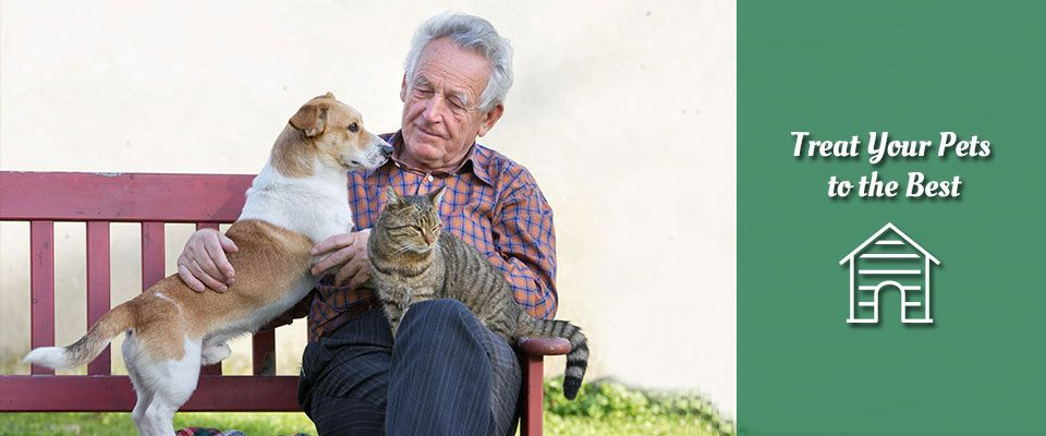 Treat your pets to the best - man sitting on a bench with a dog and cat